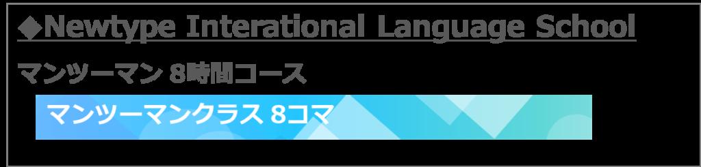 レッスン割合 セブ島留学 NILS マンツーマン8時間コース