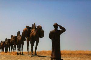UAE留学 ドバイ留学 砂漠