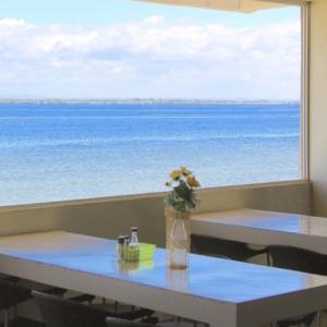 春休み 大学生におすすめリゾート系セブ島留学 Bayside English Premium 2